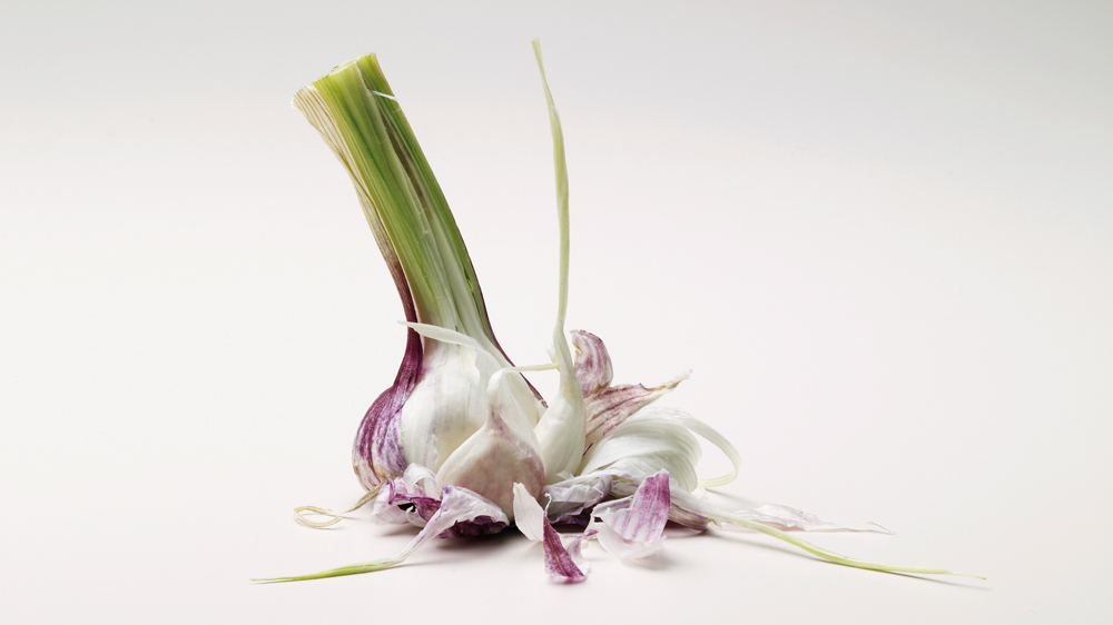 Is Garlic Good For You?